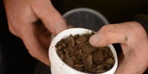 PLANTECHEF: jordprøver giver større udbytte