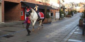 Hestetræf i Søndergade