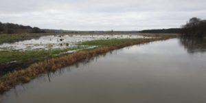 Vand omkring Hadsten - her ved Svejstrup Enge