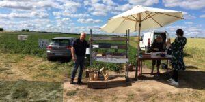 Nye kartofler og friske røde jordbær i Selling