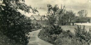 Fra det gamle album, Lyngå Skole anno 1907