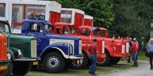 Ny organisation for ejere af Veteranlastbiler og –busser
