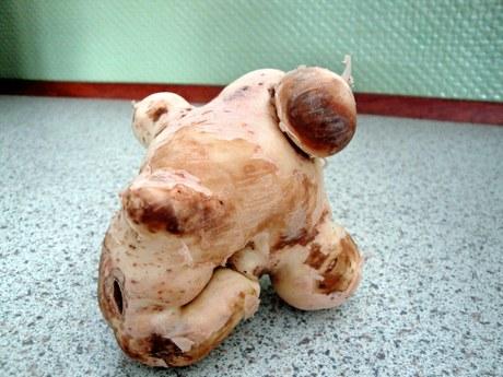 En Heldig Kartoffel Pingvinnytdk
