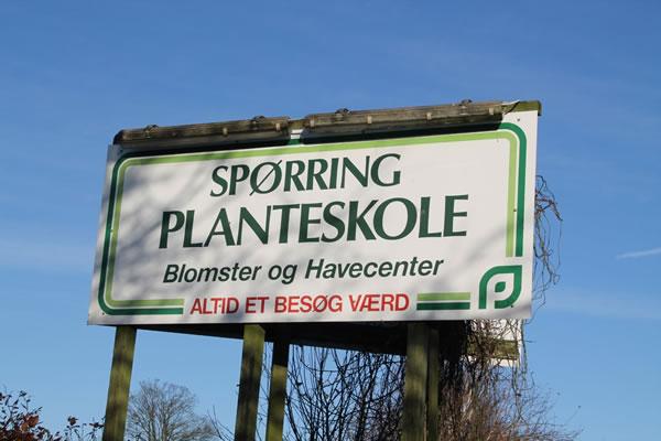 Pingviner på Spørring Planteskole – Pingvinnyt.dk