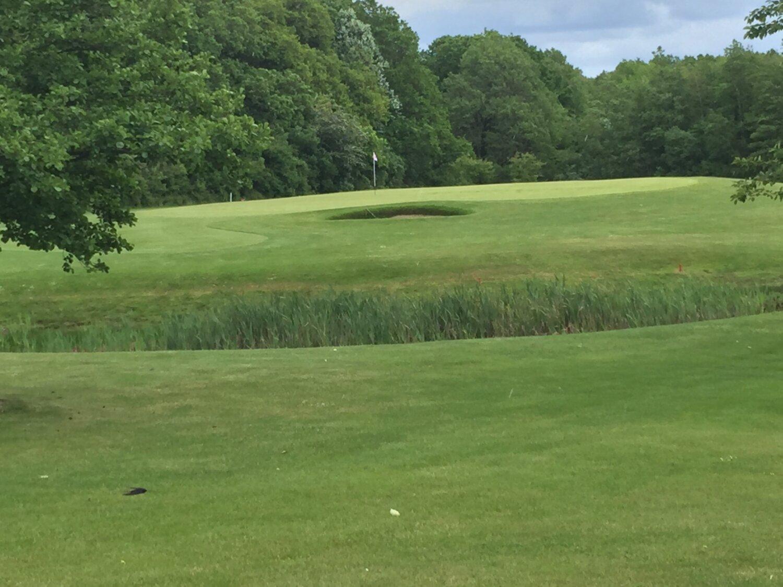 Golfsporten er i fremgang – også i Hammel Golf Klub